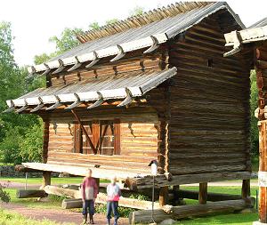 Härbre. Foto: T. Axelson [Public domain], via Wikimedia Commons